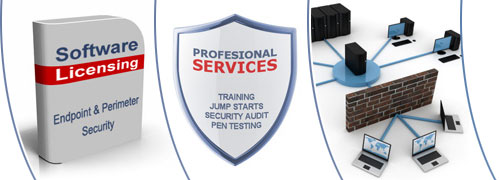 Software Licensing, Professional Services, Network Security